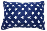 brighton_blue_star_bfast_cushion